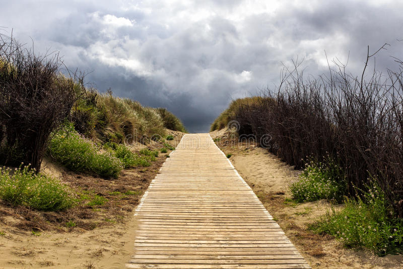 Holzweg insel Langeoog. A lonely path to nowhere on the coast of an island in the north of Germany stock photo