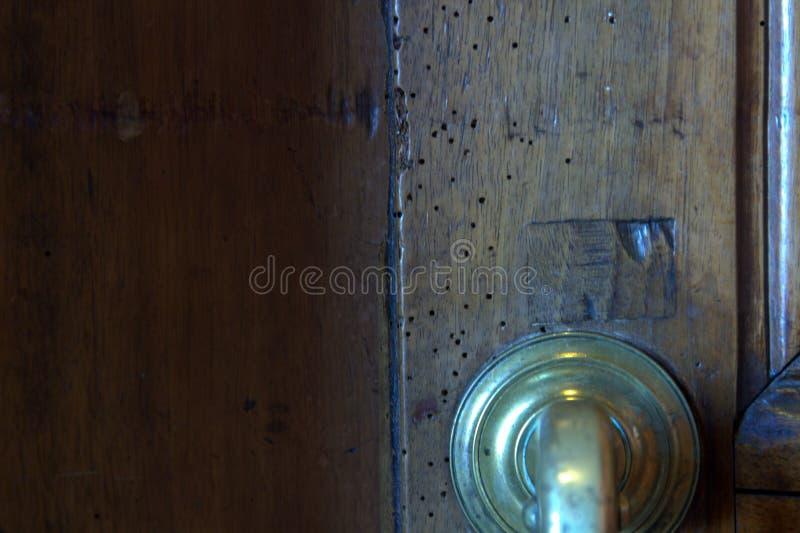 Holzwurm auf einer Tür lizenzfreie stockbilder