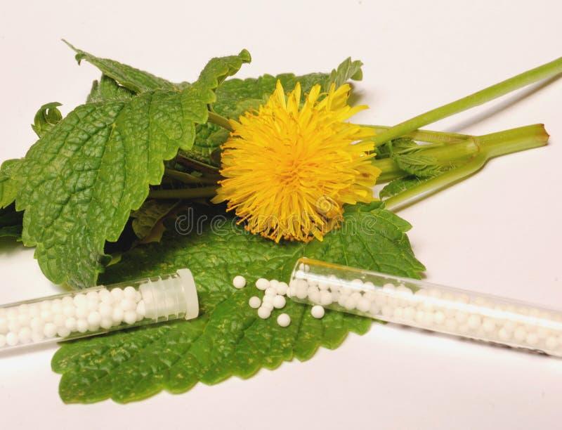 Homéopathie photo libre de droits