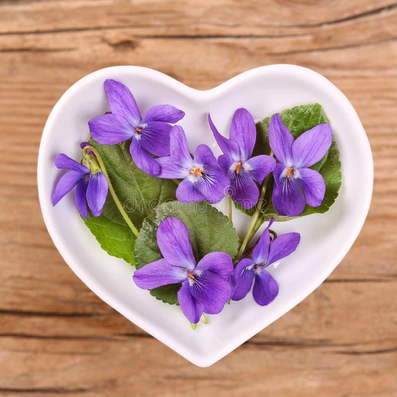 Homöopathie und Kochen mit Viola stockfotos