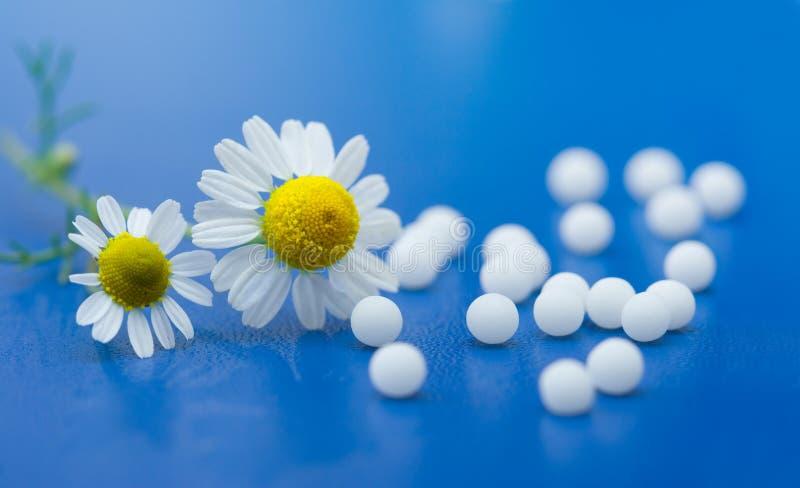 Homöopathische Medikation stockfotos
