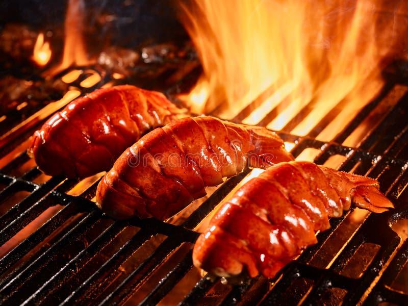 Homarów ogony gotuje na grillu zdjęcia royalty free