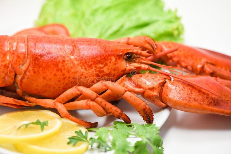 Homara owoce morza wyśmienicie na bielu talerzu z cytryna kolenderami, sałatki sałatą i zakończeniem w górę odparowanego homara j obrazy royalty free