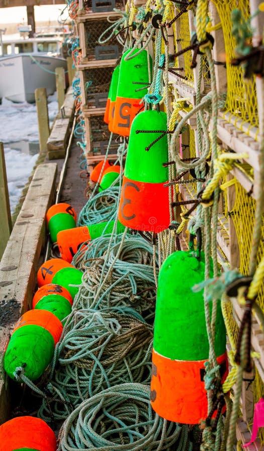 Homara połów pociesza zdjęcia stock