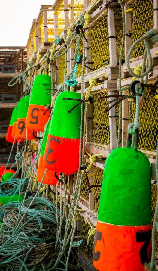 Homara połów pociesza zdjęcie stock