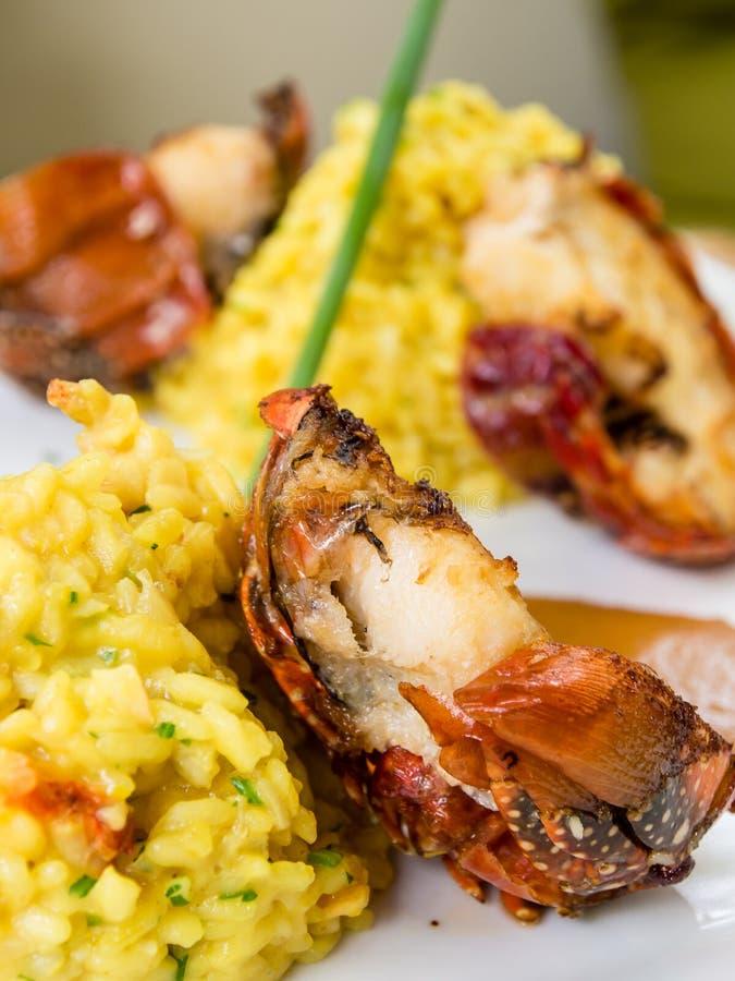 homard avec du riz jaune photographie stock libre de droits
