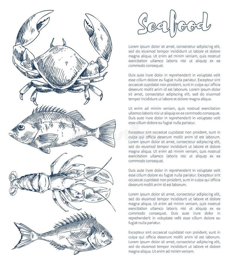 Homard et écrevisses, brème ou Bass Seafood Poster illustration de vecteur