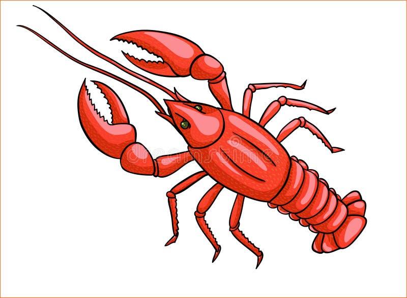 Homard rouge illustration de vecteur