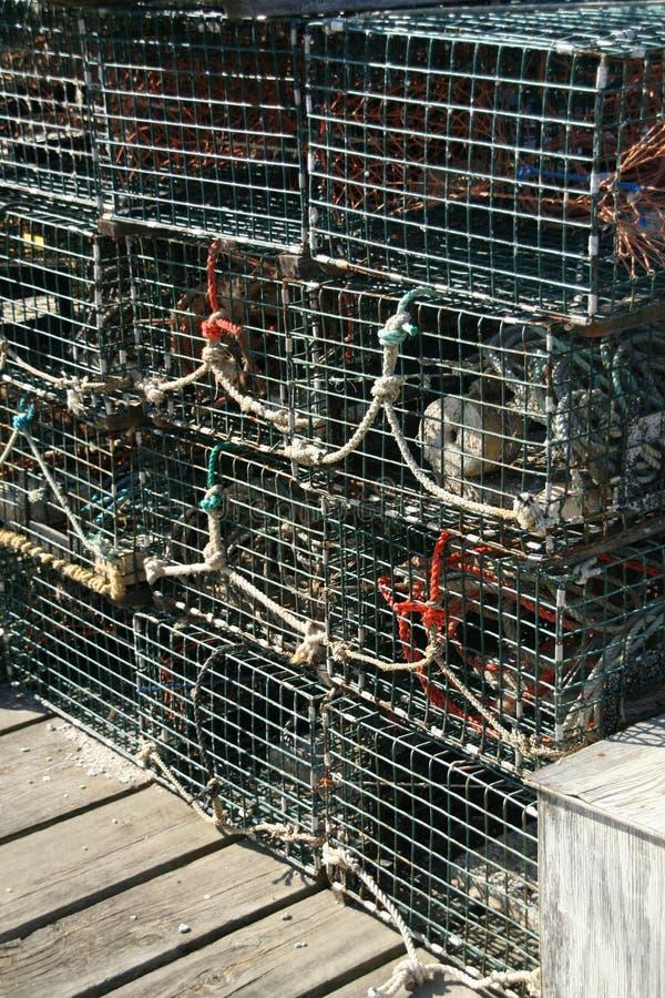 homary pułapek szczególne zdjęcia stock