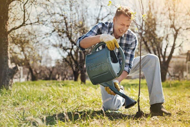 Hombre adulto positivo que riega un árbol foto de archivo
