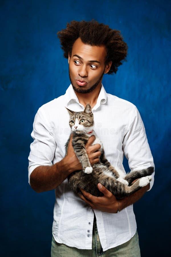 Hombre africano hermoso joven que sostiene el gato sobre fondo azul foto de archivo