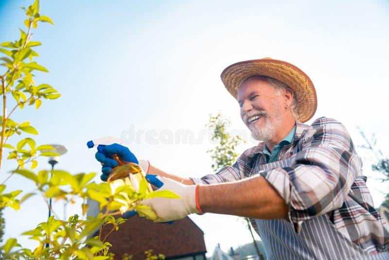 Hombre agradable alegre que toma el cuidado de plantas y de árboles foto de archivo libre de regalías