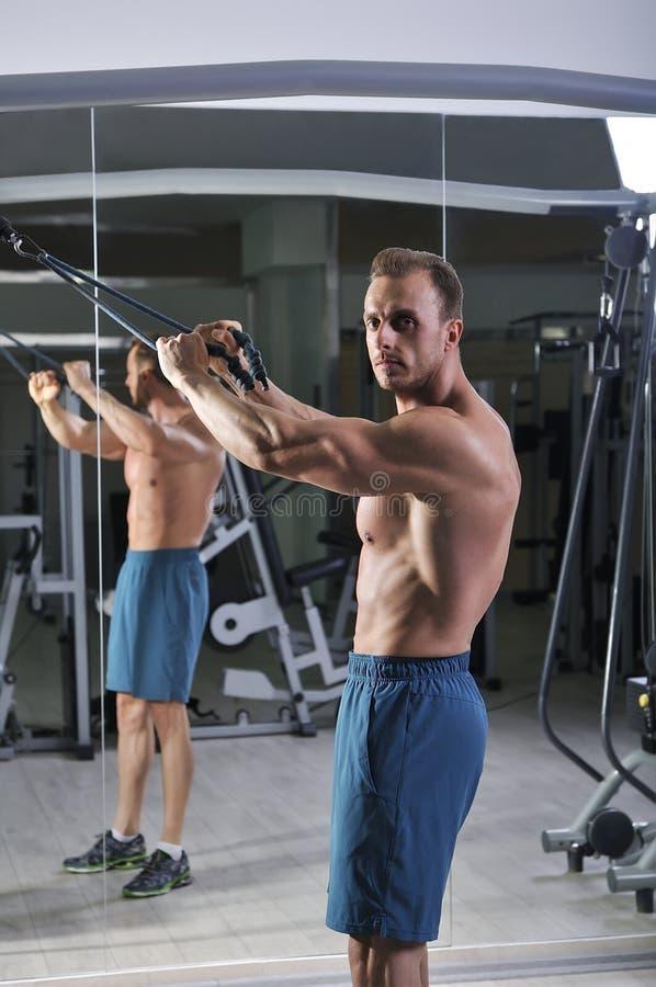 Hombre atlético potente hermoso que hace el ejercicio para la parte posterior imagen de archivo libre de regalías