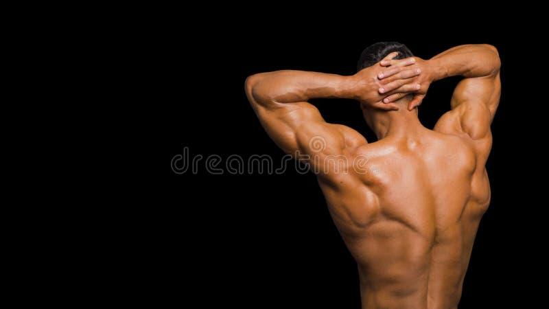 Hombre atractivo del músculo Visión posterior Aislado en oscuridad fotografía de archivo