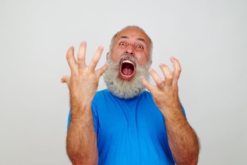 Hombre barbudo expresivo que gesticula crisis nerviosa imagen de archivo libre de regalías