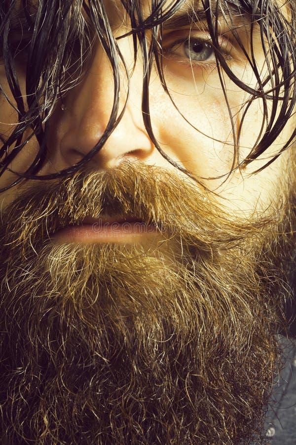Hombre barbudo hermoso fotografía de archivo libre de regalías