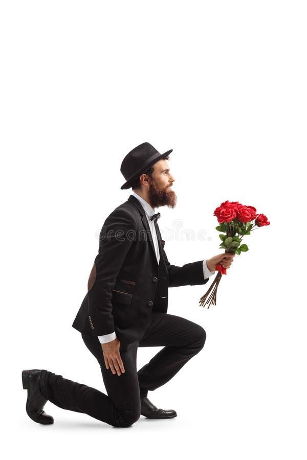 Hombre barbudo que se arrodilla y que sostiene rosas rojas fotos de archivo libres de regalías