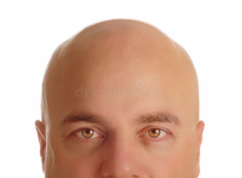 Hombre calvo fotos de archivo