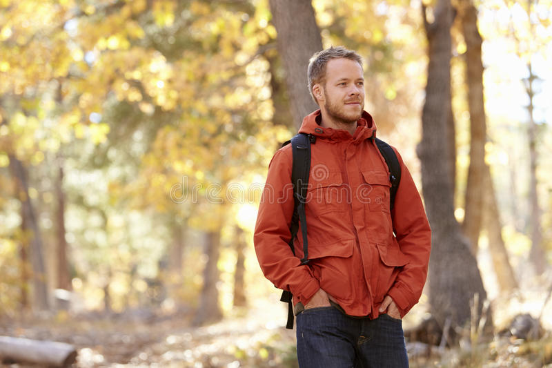 Hombre caucásico adulto joven que camina en un bosque, cierre para arriba fotografía de archivo