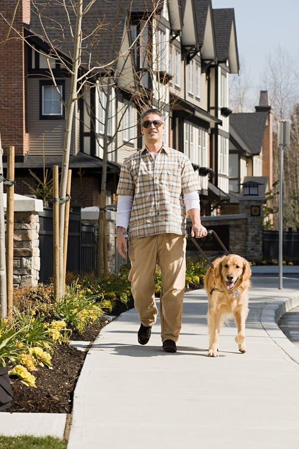 Hombre ciego con un golden retriever foto de archivo