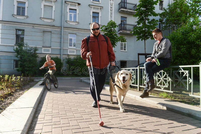 Hombre ciego y perro guía imagen de archivo