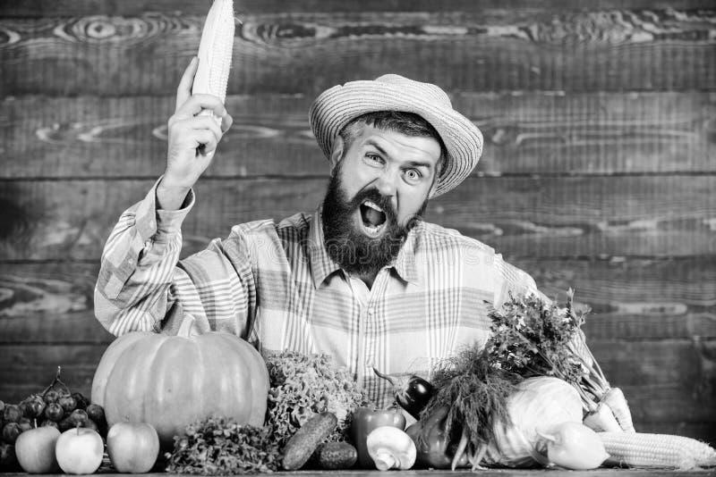Hombre con el fondo de madera de la barba Granjero org?nico convertido Granjero con las verduras de cosecha propia org?nicas Crez foto de archivo libre de regalías
