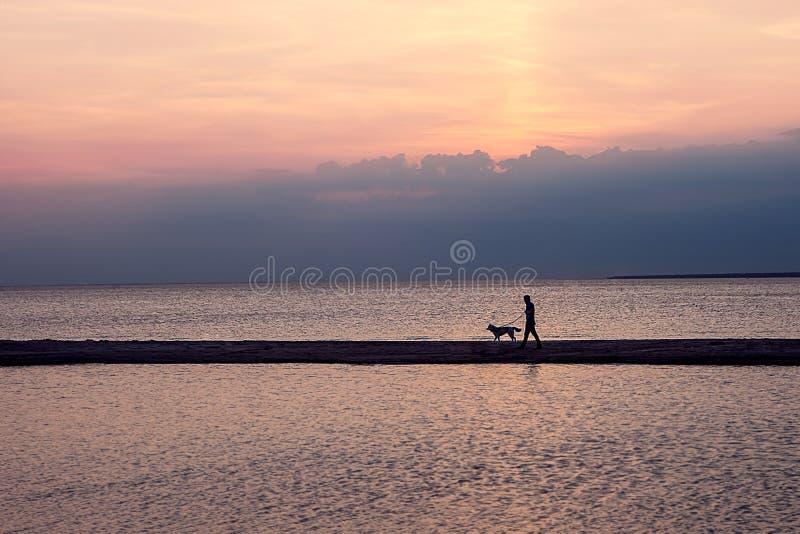 Hombre con el perro en fondo de la puesta del sol St Petersburg Rusia resplandor de luces, panorama de la ciudad paisaje, en el f imagen de archivo