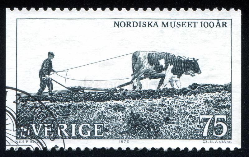 Hombre con el sembrador traído por caballo fotografía de archivo libre de regalías