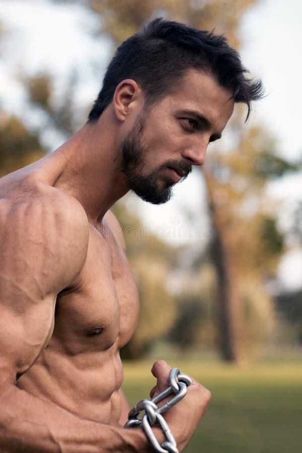 Hombre con el torso muscular Demostración muscular de Torso del modelo de la aptitud del hombre fotografía de archivo