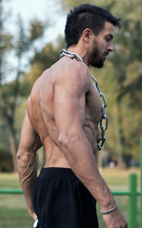 Hombre con el torso muscular Demostración muscular de Torso del modelo de la aptitud del hombre foto de archivo