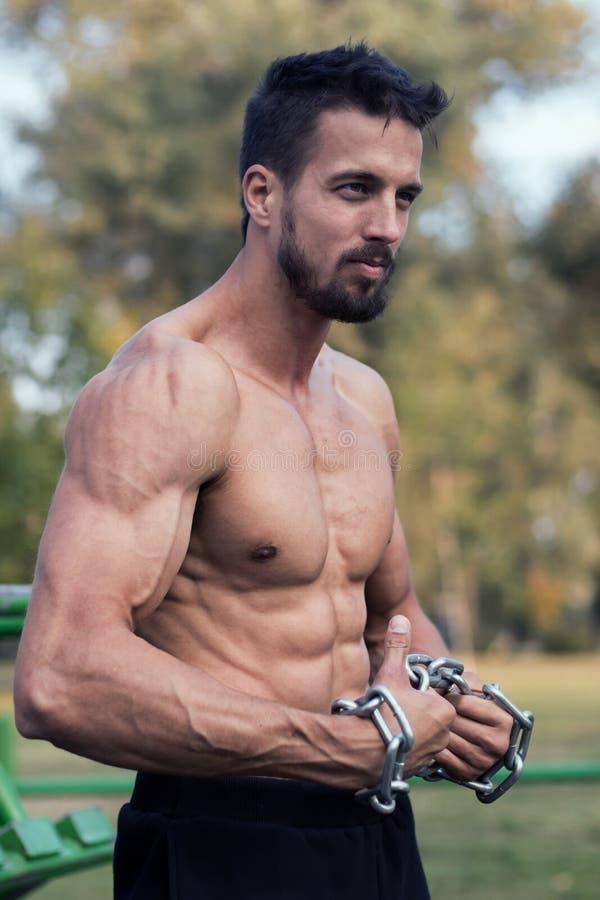 Hombre con el torso muscular Demostración muscular de Torso del modelo de la aptitud del hombre fotos de archivo