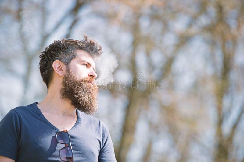 Hombre con la barba y bigote en la cara tranquila, ramas en el fondo, defocused Concepto de la relajación Hombre con la barba lar imagenes de archivo