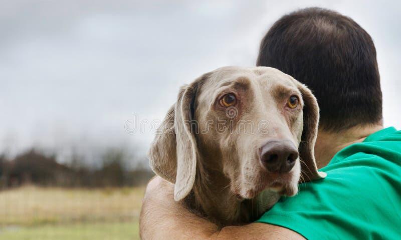 Hombre con su perro al aire libre fotos de archivo libres de regalías