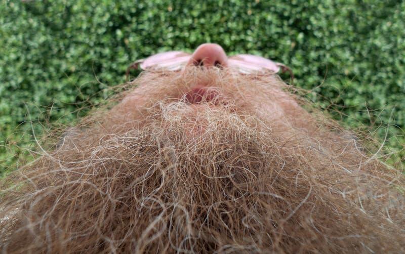 Hombre con una barba larga fotografía de archivo libre de regalías