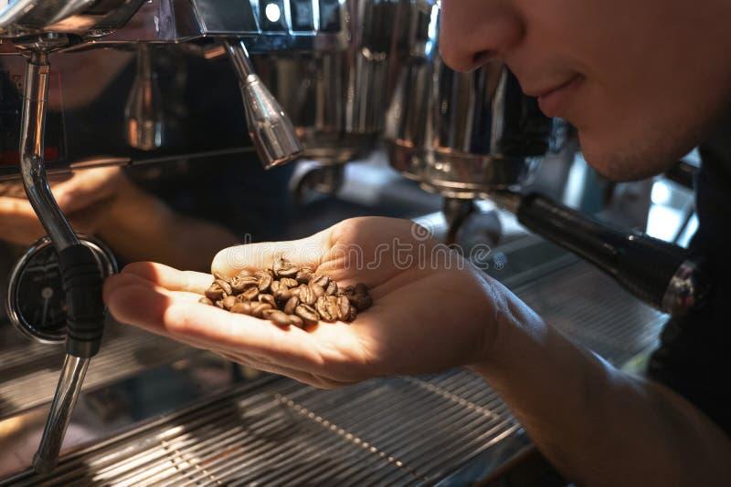 Hombre de Barista que huele los granos de café recientemente asados en su situación de la mano cerca de la máquina profesional de fotos de archivo