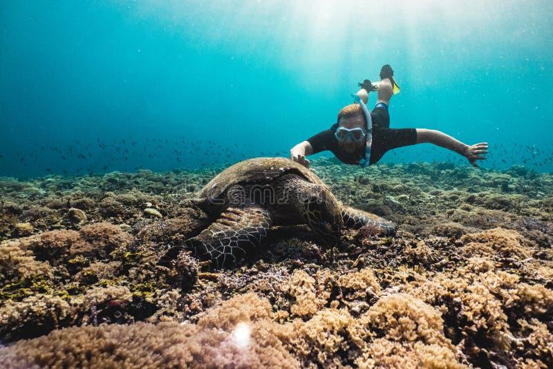 Hombre de Freediver con la tortuga linda fotos de archivo