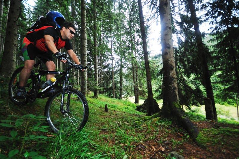 Hombre de la bici del montaje al aire libre imagenes de archivo