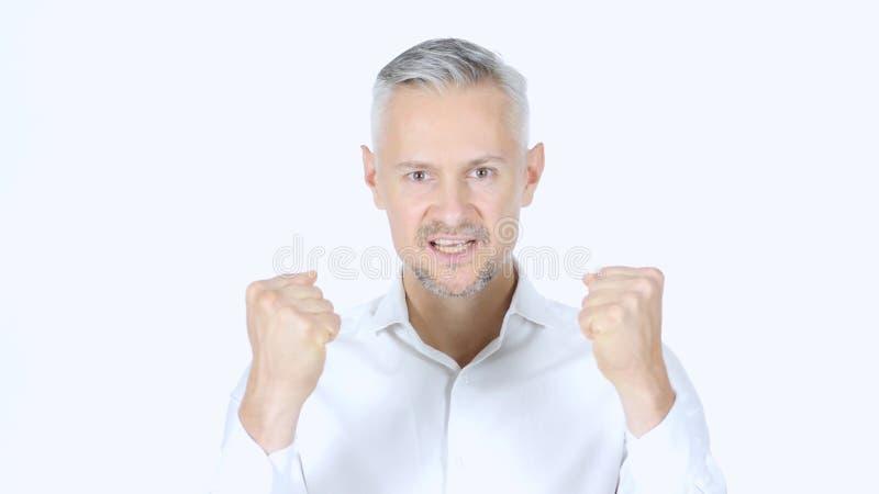 Hombre de negocios Cheering Success, acertado, retrato imagen de archivo
