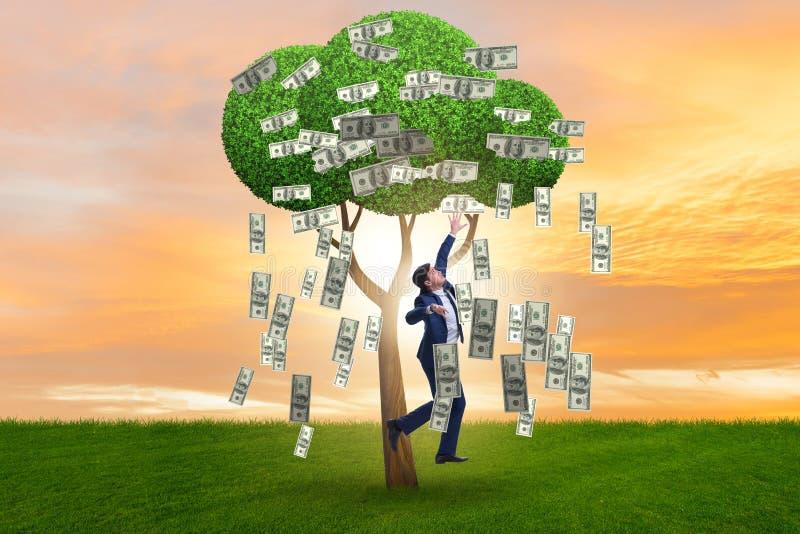 Hombre de negocios con el árbol del dinero en concepto del negocio fotografía de archivo libre de regalías