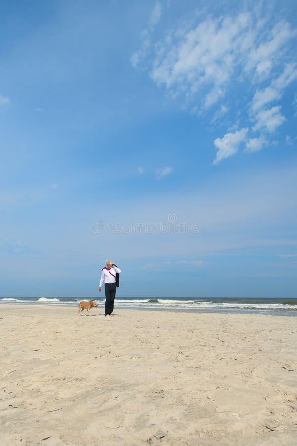 Hombre de negocios con el perro en la playa fotos de archivo