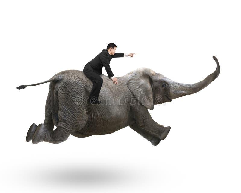Hombre de negocios con señalar el montar a caballo del gesto del finger en elefante imagen de archivo