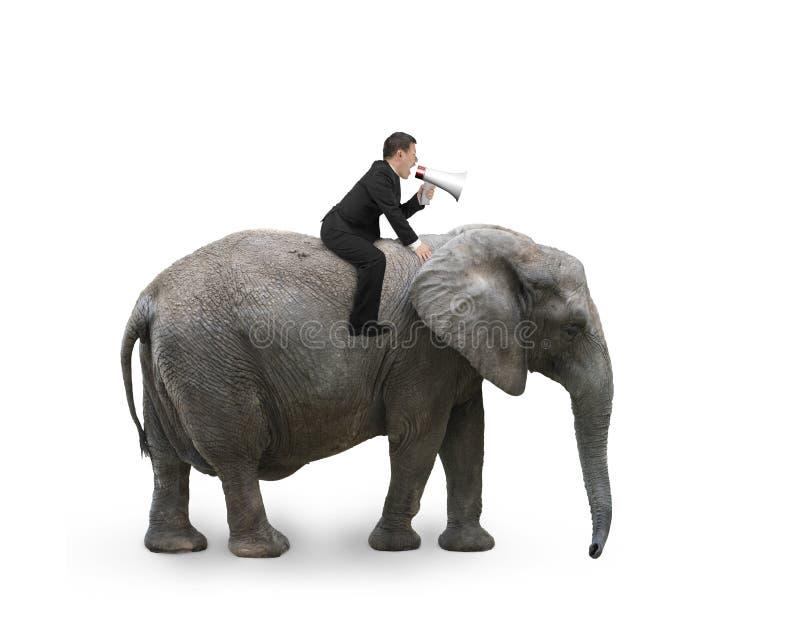 Hombre de negocios con usar el montar a caballo del locutor en elefante que camina foto de archivo