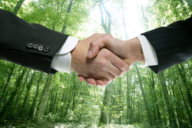 Hombre de negocios ecológico del apretón de manos en un bosque fotografía de archivo libre de regalías