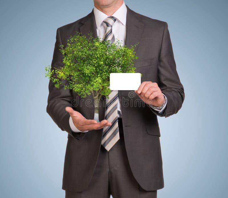Hombre de negocios en tarjeta vacía del control del traje y árbol verde fotos de archivo