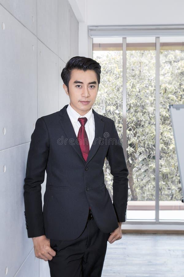 Hombre de negocios hermoso joven que sonríe y elegante en la oficina Él es 20-30 años imagenes de archivo