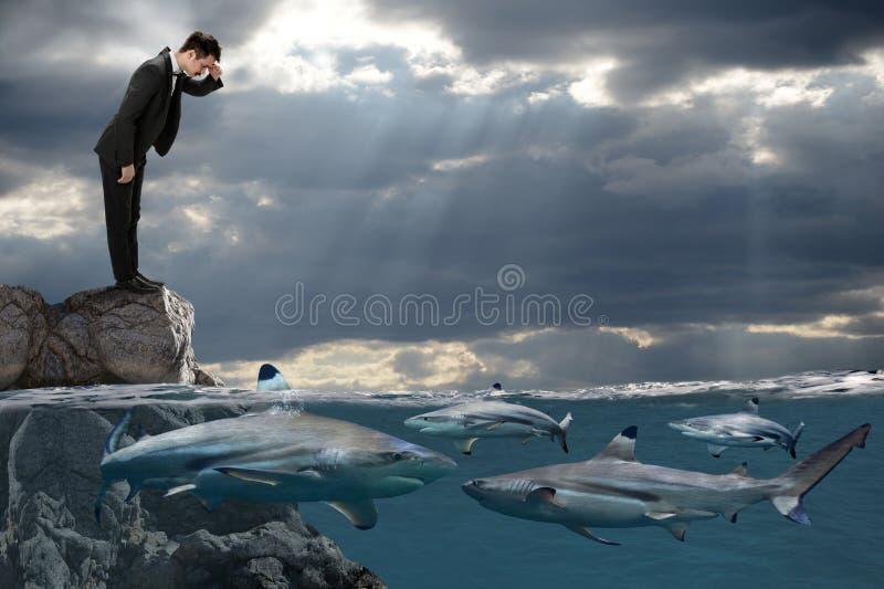 Hombre de negocios Looking en los tiburones que nadan fotografía de archivo