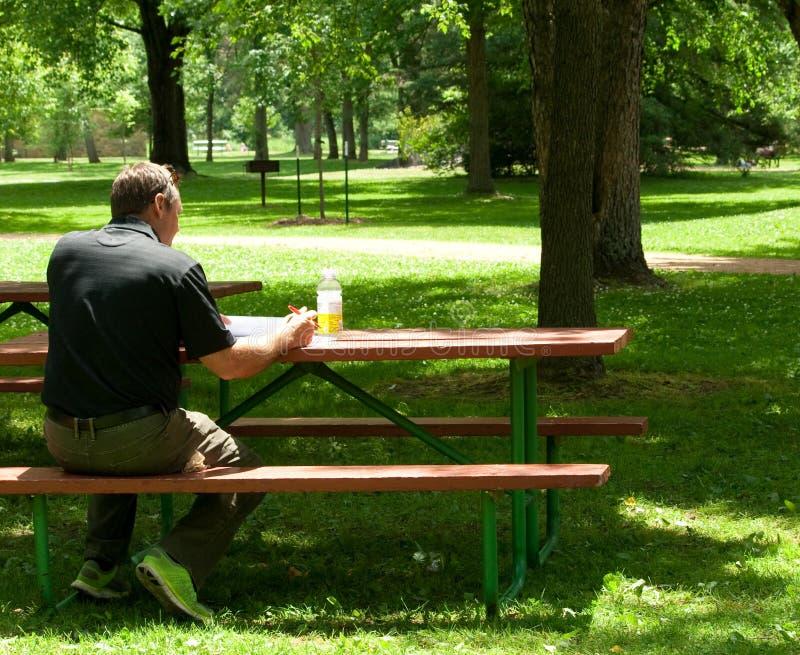Hombre de negocios ocasional vestido que estudia en parque fotografía de archivo libre de regalías