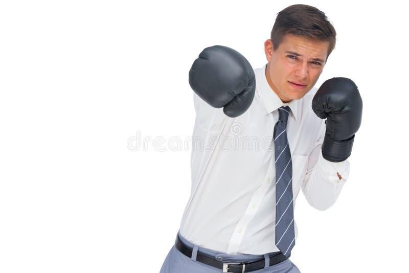 Hombre de negocios que perfora con los guantes de boxeo negros foto de archivo libre de regalías