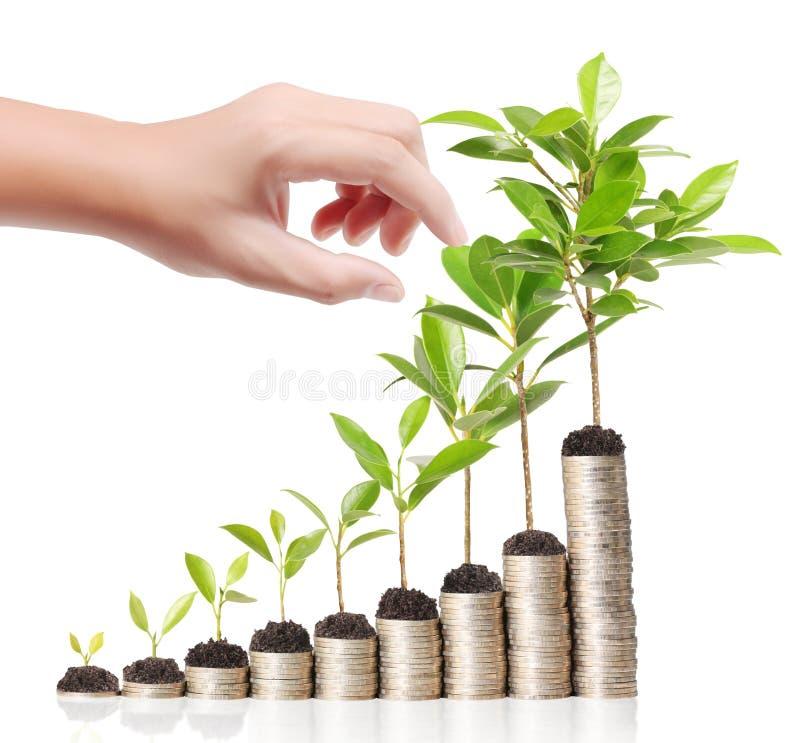 Hombre de negocios que sostiene la planta que brota del puñado de monedas ilustración del vector