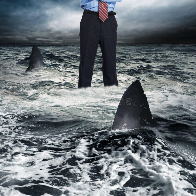 Hombre de negocios rodeado por el tiburón imagen de archivo libre de regalías